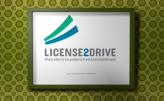 Logo Design License 2 Drive
